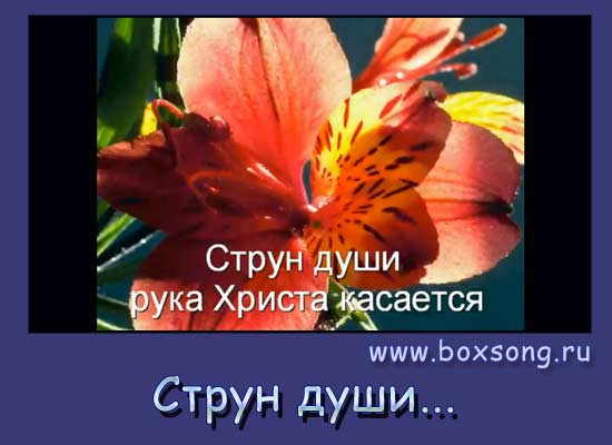 Струн души рука Христа касается - христианский гимн
